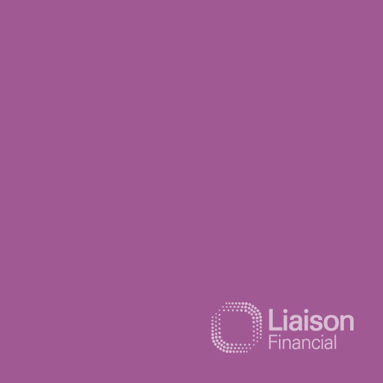 Liaison Group Workforce Management and Financial Services